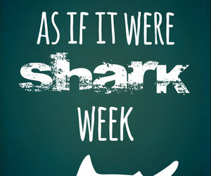 live, shark, and quote image