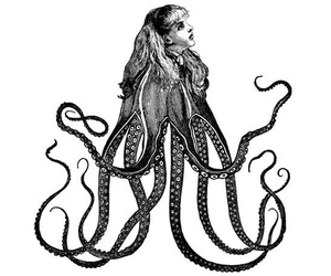 octopus and tentacles image