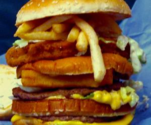 Chicken, fish, and hamburger image