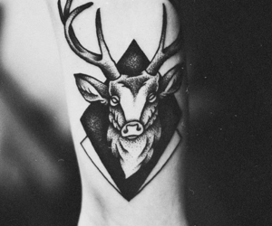 deer and tattoo image