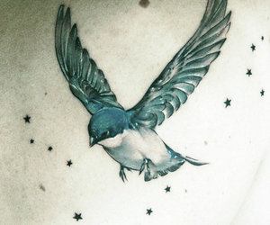 tattoo, bird, and stars image