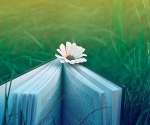 book, flower, and green image