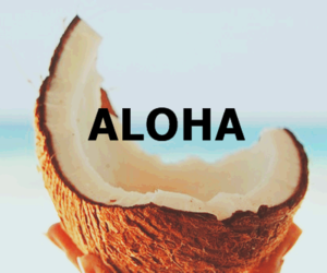 Aloha, summer, and coconut image