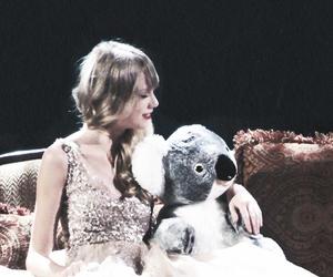 Taylor Swift and Koala image
