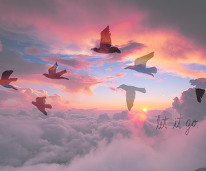 quote, birds, and clouds image
