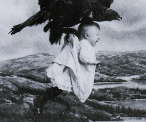 baby, black and white, and bird image