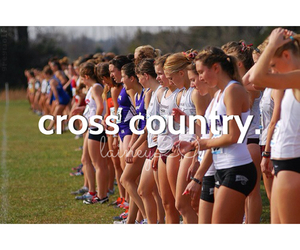 cross country, edit, and run image