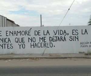 frases, vida, and cute image