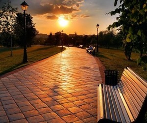 park and sunset image