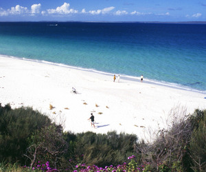 home, jervis bay, and whitest sand in the world image