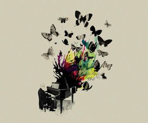 butterfly, music, and colour image