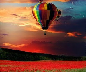 sky, balloons, and flowers image