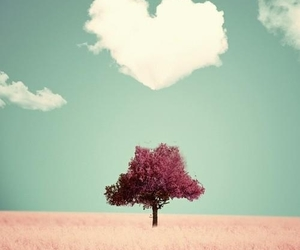 heart, pretty, and pink image