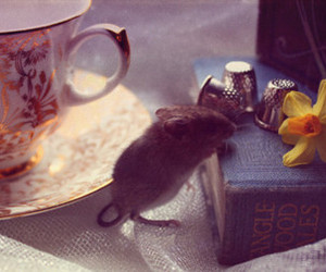 mouse, book, and cute image