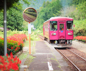 pink, train, and flowers image