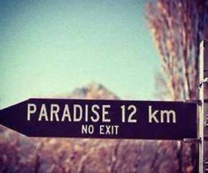paradise, no exit, and summer image