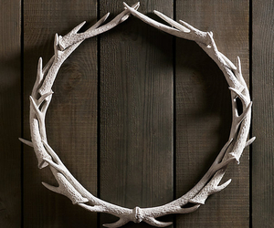 antlers and wood image