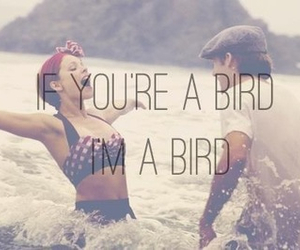 love, bird, and the notebook image