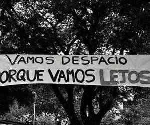 love, quote, and lejos image