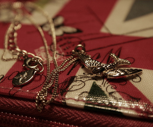 bird and accessorize image