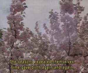 flowers, season, and tree image