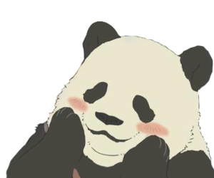 panda, png, and animal image