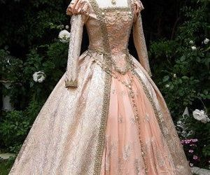 beautiful gown image