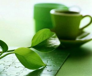 coffee, green, and leaf image