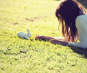 girl, bunny, and grass image