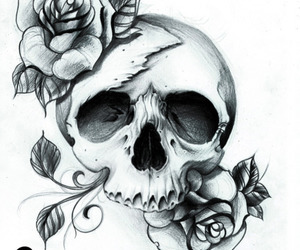 skull, rose, and art image