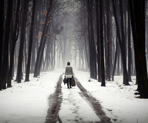 snow, alone, and trees image