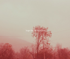 hope, hopeless, and quote image