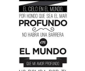 text, love, and frases image