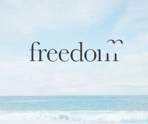 freedom, free, and sea image