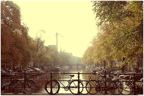 amsterdam, bicycle, and europe image