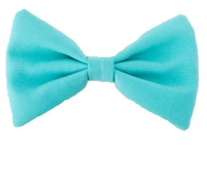 bow, transparent, and overlay image