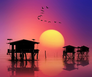 sunset, cool, and nature image