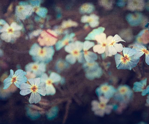 awesome, flower, and cute image