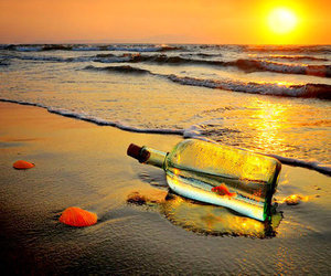 beach, fish, and bottle image