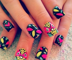 nails, owl, and colorful image