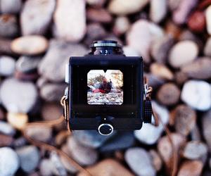 analog, camera, and film camera image