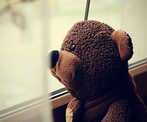 bear, alone, and teddy image