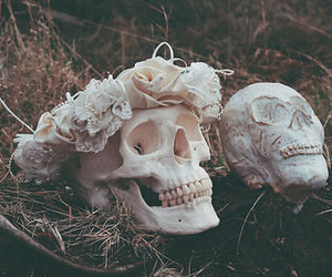skull, flowers, and grunge image