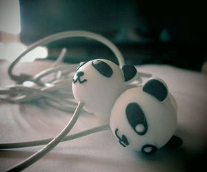 music, panda, and quotes image