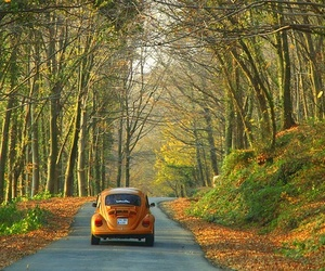 car, road, and autumn image