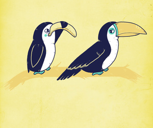 funny and tucan image
