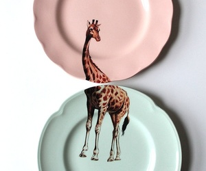 giraffe and plate image