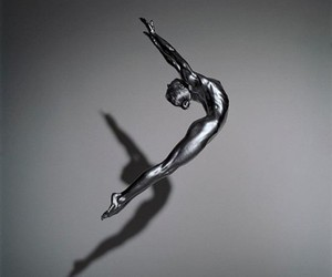 silver, Guido Argentini, and silvereye image