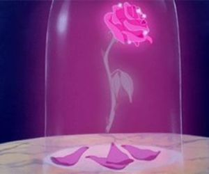 rose, disney, and beauty and the beast image