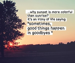 quote, life, and sunset image